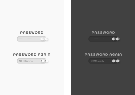 Visible-Invisible-Password-Concept_cover